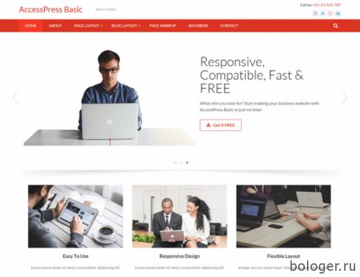 AccessPress Basic
