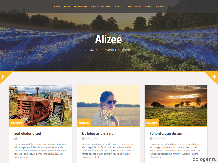 Alizee WordPress шаблон